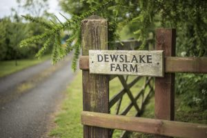 Dewslake Farm Campsite
